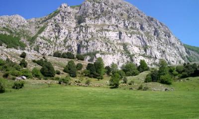 monte_Alpi