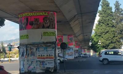 affissioni_circo